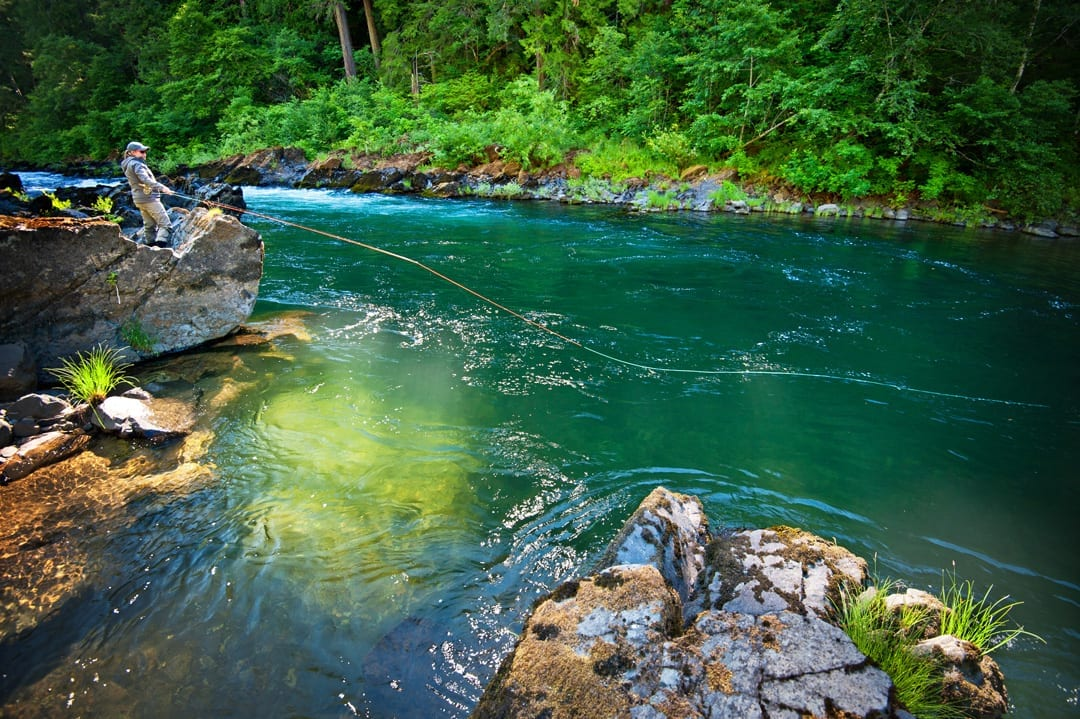 Fly fishing on the Umpqua River in Southern Oregon