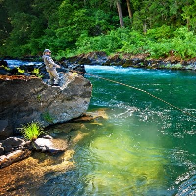 Exploring the Waters and Trails of the North Umpqua Valley