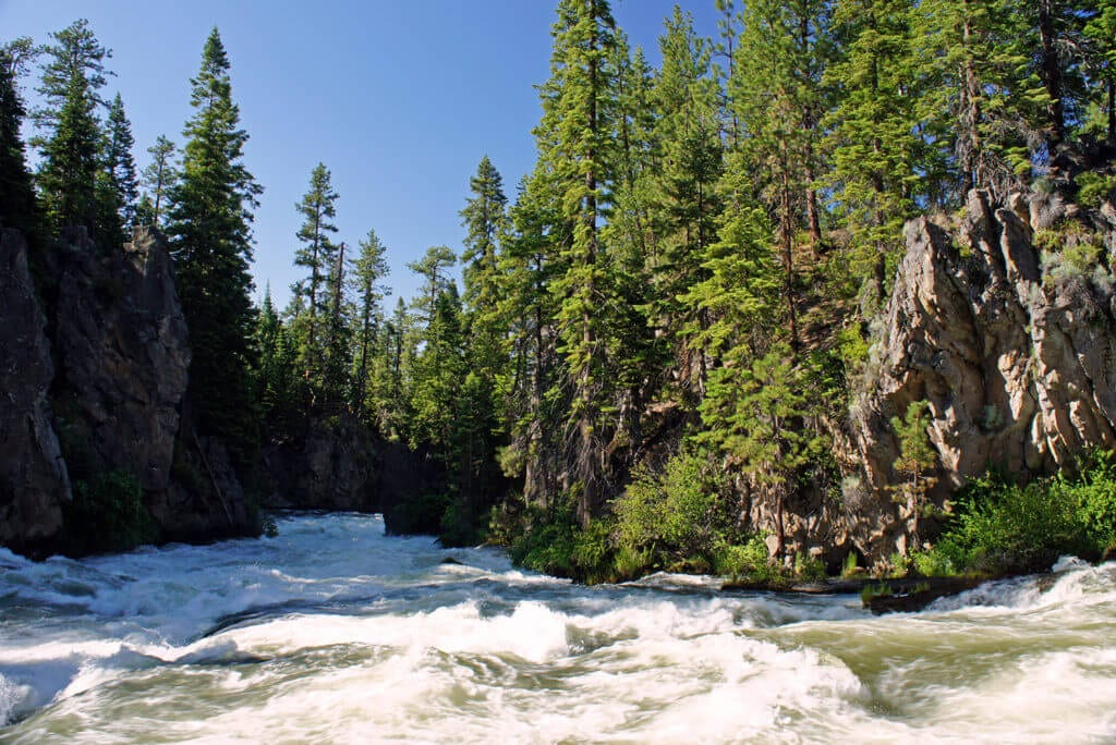 The roaring rapids of Benham Falls on the Deschutes just above Bend.