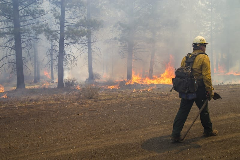 A firefighter working on a prescribed burn in Central Oregon.