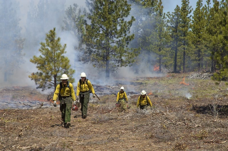 Firefighters work on a prescribed burn in Central Oregon.