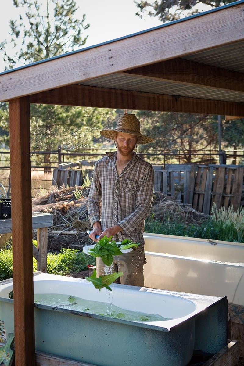 Co-owner of Mahonia Gardens farm Benji Negal