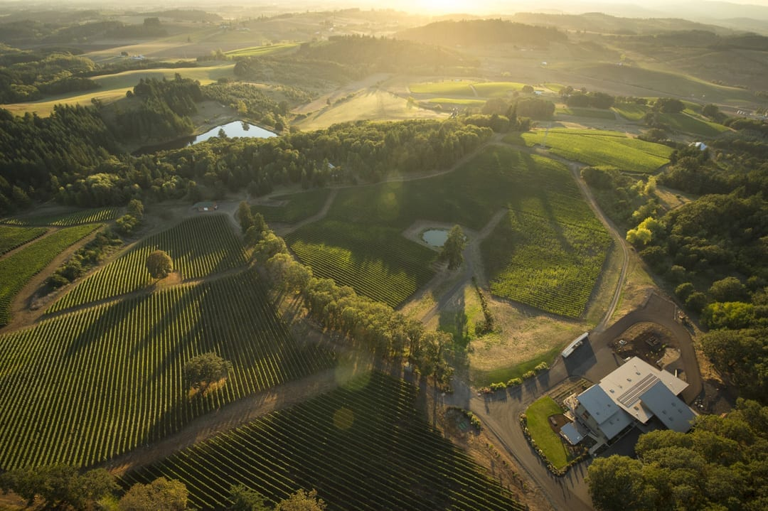 aerial of alexana winery in willamette valley wine region