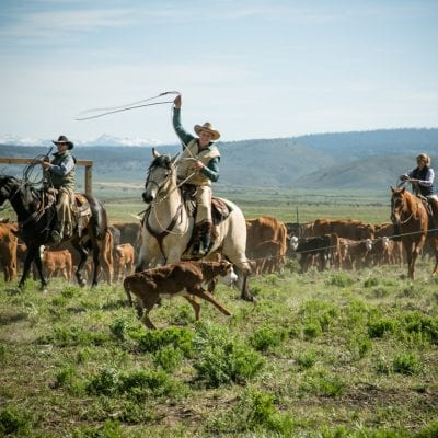 Cowboys and Golfers Meet at Silvies Valley Ranch