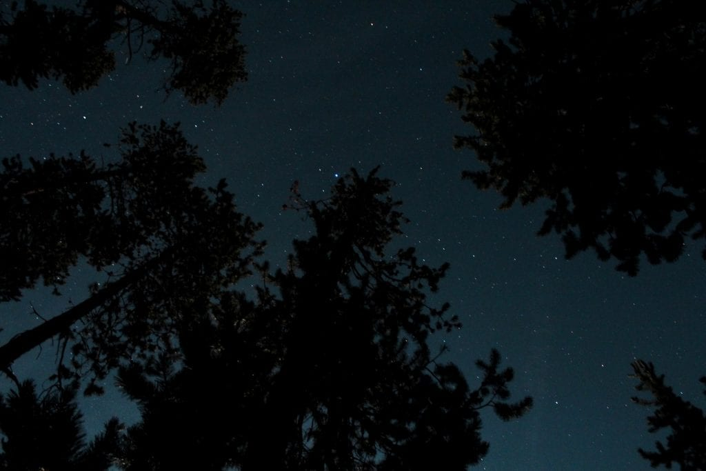Night sky in the Deschutes National Forest in Bend, Oregon on a canoe trip with Wanderlust Tours