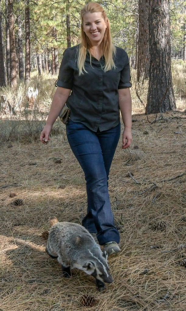 Walking with Clyde the badger at the High Desert Museum in Bend, Oregon