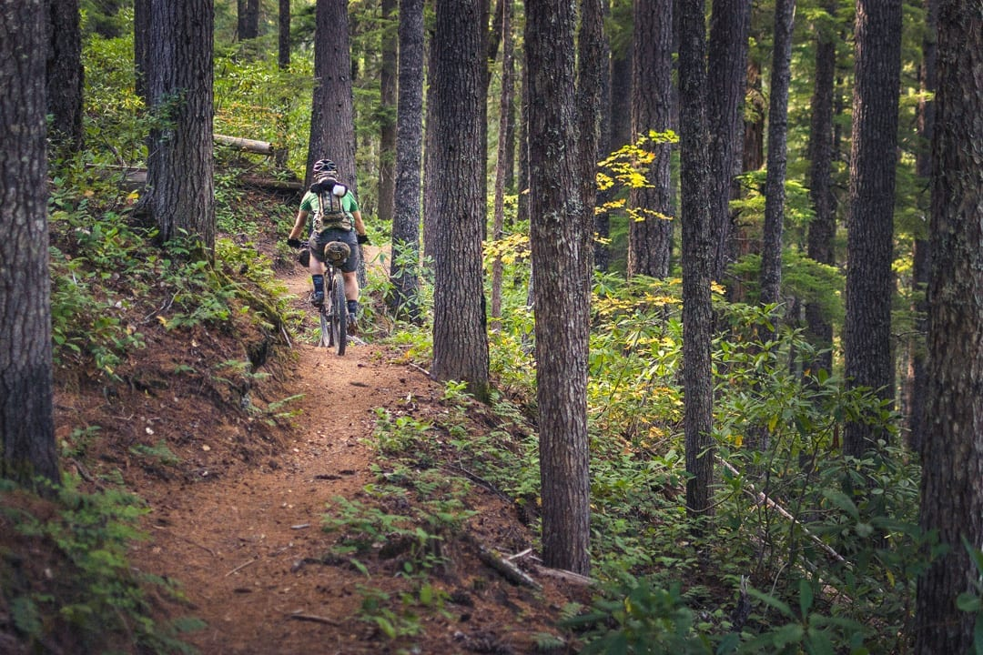 Mountain biking on the North Umpqua Trail in Southern Oregon.